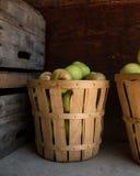 Een bushel appelen Stock Fotografie
