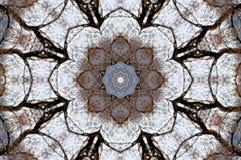 Een caleidoscoop, abstracte fantasie, illustratie, Royalty-vrije Stock Fotografie
