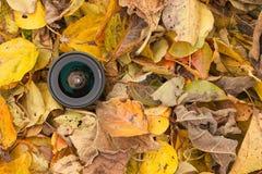 Een cameralens over een gekleurde bladerenachtergrond in de herfst Royalty-vrije Stock Fotografie