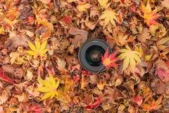 Een cameralens over een gekleurde bladerenachtergrond in de herfst Stock Fotografie
