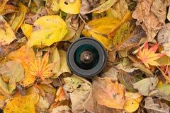 Een cameralens over een gekleurde bladerenachtergrond in de herfst Stock Afbeeldingen