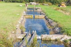 Een cascade van reservoirs voor vissen Vissen, forellandbouwbedrijf stock foto