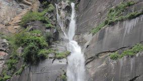 Een cascade van een waterval van een klip en bomen stock videobeelden