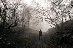 Een cijfer die met een kap zich in een griezelig bos op een mistige de wintersdag bevinden Met gedempt korrelig geef uit royalty-vrije stock fotografie