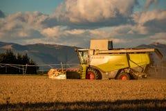 Een Claas-Maaimachine die op een landelijk gebied op een de zomeravond werken stock afbeelding