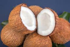 Een close-up van een groep kokosnoten Mooie kokosnoten op een blauwe achtergrond Gezonde Hawaiiaanse kokosnoten Voedzame vruchten Stock Foto's