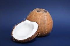 Een close-up van kokosnoten op een donkerblauwe achtergrond Een gehele bruine kokosnoot en de helft van een noot Heerlijke gastro Stock Afbeelding
