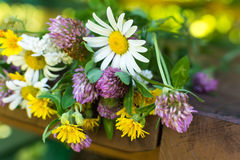 Een close-upboeket van wildflowers Stock Foto