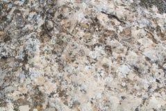 Een close-upmening van een steen Royalty-vrije Stock Foto