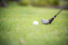 Een club op een golfcursus Geschoten van fairway royalty-vrije stock afbeelding