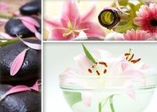 Een collage van de kuuroordbehandeling van drie verschillende beelden Royalty-vrije Stock Afbeelding