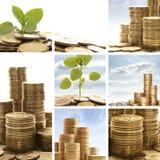 Een collage van gouden muntstukken en groene bladeren Royalty-vrije Stock Afbeelding