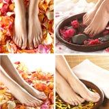 Een collage van kuuroordbeelden met voeten en bloemblaadjes Royalty-vrije Stock Foto's