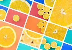 Een collage van vele beelden met sappige sinaasappelen Reeks beelden met vruchten en verschillende kleuren stock afbeeldingen