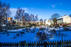 Een communautaire stadstuin in de winter stock foto