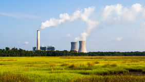 Een concept vernieuwbare groene energie: een madeliefje en een gras over het symbool van gebroken kernenergie Stock Foto