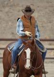 Een cowboy leidt een paard op. Stock Afbeelding