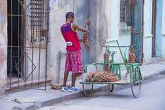 Een Cubaanse uiverkoper Stock Afbeelding