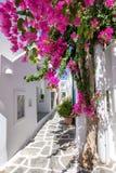 Een cycladic, vergoelijkte steeg in Naousa, Paros stock foto