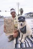 Een dakloze mens en zijn hond Royalty-vrije Stock Foto