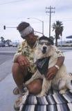 Een dakloze mens en zijn hond Stock Afbeeldingen