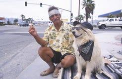 Een dakloze mens en zijn hond Royalty-vrije Stock Afbeelding