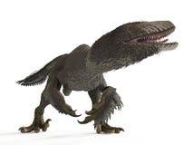 een dakotaraptor vector illustratie