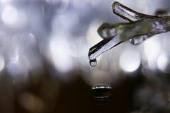 Een daling van water op de ijskegel, macro royalty-vrije stock foto