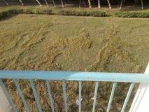 Een de fotospruit van de overheidsuniversiteit in Jaranwala bij hoogte royalty-vrije stock foto