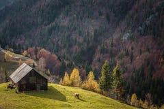 Een de herfstdag in een dorp dichtbij het kasteel van Dracula ` s Stock Foto