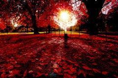 Een de herfstmiddag in Londen Stock Afbeelding