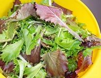 Een de Lentemengeling van verse organische greens in een geel vergiet stock foto's