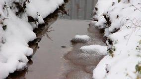 Een de winterdag, sneeuwdalingen op een kleine stroom, wankelt het gras stock video