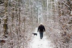 Een de winterdag, een vrouw en een hond lopen in het hout, heel stock fotografie