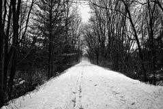 Een de wintergang stock afbeeldingen