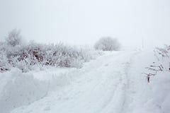 Een de winterweg in het gebied van Orenburg Stock Foto's