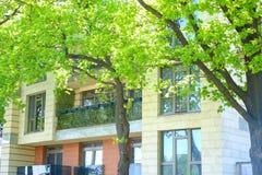 Een de zomer pension balkons in installaties met bloemen het lopen in de koele schaduw van bomen stock foto
