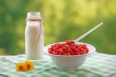 Een de zomerbeeld met wilde aardbeien, melk en bloemen Stock Afbeelding