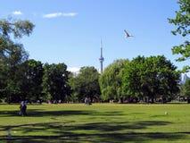 Een de zomerdag in het park op het Eiland van Toronto, die CN t overzien stock foto's