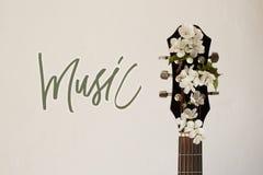 Een deel van de gitaar met bloesemkers Royalty-vrije Stock Afbeeldingen