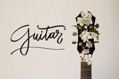 Een deel van de gitaar met bloesemkers Stock Foto's