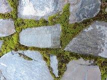 Een deel van de steenmuur met groen de lentemos - als mooie textuur stock afbeeldingen