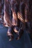 Een deel van donkerbruine vrouw. Haarkrullen. In de studio van de het kappenschoonheid. Stock Afbeeldingen