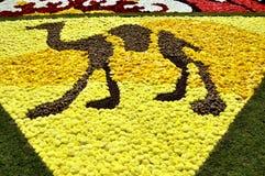 Een deel van een bloemtapijt - kameel Royalty-vrije Stock Fotografie