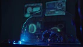 Een deel van lichaam van buitenaards schepsel ligt in laboratorium onder glas stock video