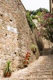 Een deel van oude die muur en steentreden met bloemen worden verfraaid Stock Fotografie