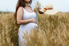 Een deel van paar in zwanger tijdens zonsondergang op het gebied met gele tarwe Sluit omhoog Wachtende baby royalty-vrije stock foto's