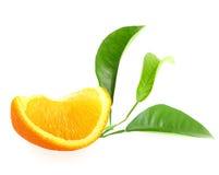 Een deel van sinaasappel en tak met groen blad Stock Afbeeldingen