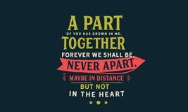 Een deel van u is in me gegroeid, samen voor altijd zullen wij, nooit apart, misschien in afstand, maar niet in het hart zijn vector illustratie
