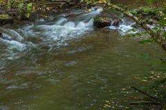 Een deel van Venoge-rivier Royalty-vrije Stock Foto